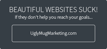 Beautiful Websites Suck!